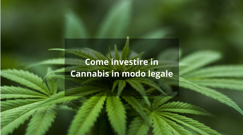 investire in cannabis
