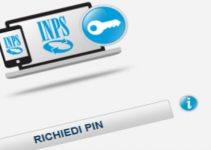 Pin Inps Online